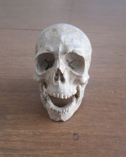 Skull Head Bone Carving Made From Special Bone